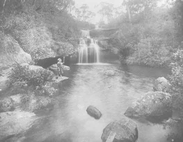 Frederica Falls, Lawson, Blue Mountains.