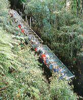 Katoomba Scenic Railway, Blue Mountains, Australia